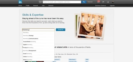 Using SEO Keyword Phrases in Your LinkedIn Profile | Social Media & SEO Advice | Scoop.it