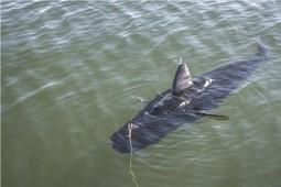 US Navy Tests New GhostSwimmer Unmanned Underwater Vehicle   Marine Technology   Scoop.it
