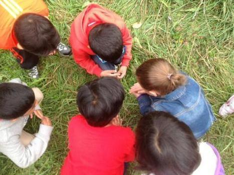 From Themes to Play-based Emergent Curriculum – Where to Begin? | Reggio Inspired Learning | Scoop.it