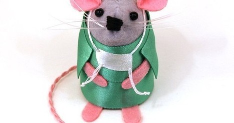 Bored surgeons announce successful transplant from a mouse to a human face | Bumpic | Funny articles | Scoop.it