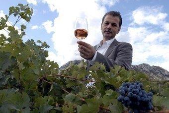 Investir dans la vigne varoise: la parade anti-crise? - Var-Matin | Le vin quotidien | Scoop.it