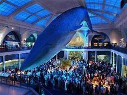 Museos imprescindibles alrededor del mundo | historian: science and earth | Scoop.it