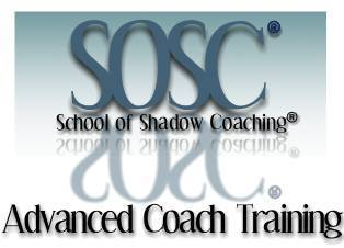 ACEC Announces Yet Another Program for Senior Level Executive Coaches, Given by One of Its Members—Donna Karlin | Executive Coaching | Scoop.it