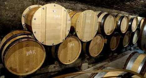 Un tonneau automatisé pour contrôler les paramètres de la vinification | Le Vin et + encore | Scoop.it