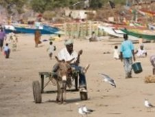 West Africa: Bright Future? - ISN | Women Leadership | Scoop.it