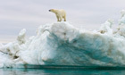Loss of Arctic sea ice '70% man-made' | Messenger for mother Earth | Scoop.it