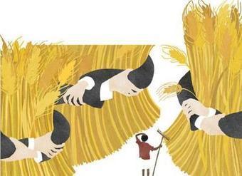 Enda Tiers Monde appelle à la promotion de ''l'agriculture paysanne'' | Daraja.net | Scoop.it