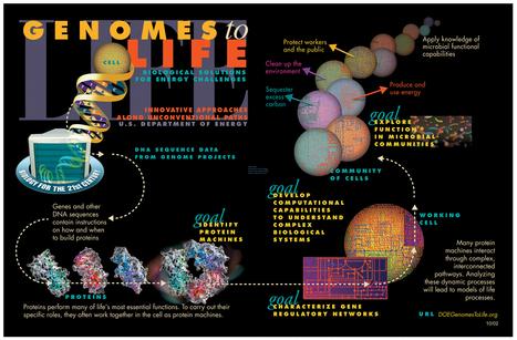 Amazing Science: Genomics Postings | Amazing Science | Scoop.it