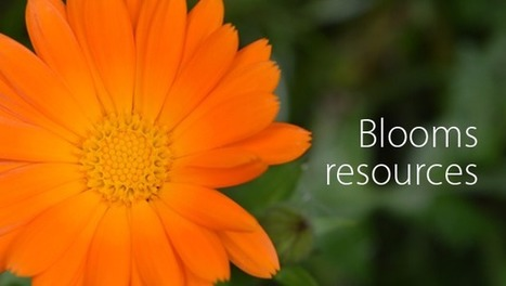 Curated Blooms Taxonomy (digital) resources | Educacion, ecologia y TIC | Scoop.it