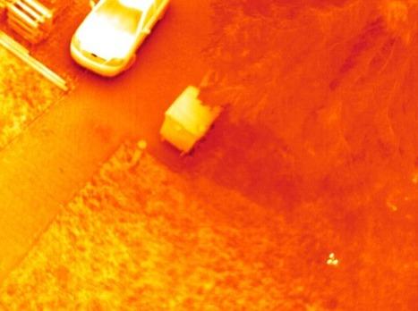 Drones que detectan huevos | Hacked Freedom | Scoop.it