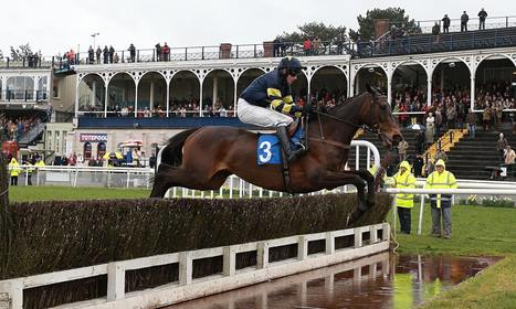 Talking Horses: Best bets for Newbury in our daily racing blog ... | Equestrian | Scoop.it