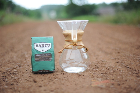 Burgeoning Bantu Coffee Fights Poverty Through Farm Investment | Coffee News | Scoop.it