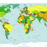 Translation, Languages (Italian, English, Chinese, French) and Language Learning