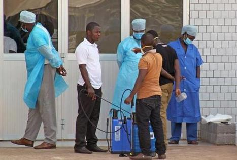 NewsDaily: Ebola virus in Africa outbreak is a new strain | Medical Microbiology & Infectious Disease | Scoop.it