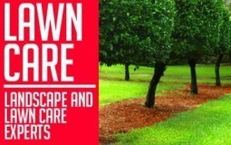 Spring And Summer Lawn Care: Spring TX Professionals Share Tips | Home Improvement Guides | Scoop.it
