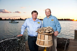 Innovation bolsters aquaculture industry in Dorchester - My Eastern Shore | Aquaculture Directory | Scoop.it