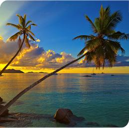 Business class flights to Seychelles | Business Class Travel | Scoop.it