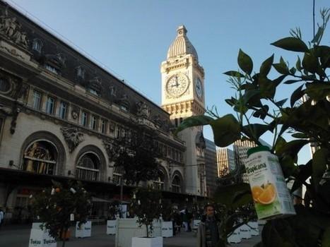 Tropicana installe une orangeraie éphémère pour fêter le passage à l'heure d'été | streetmarketing | Scoop.it
