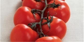 À Catanada na Cozinha: Sopa fresca de Tomate-Laranja com Quenelles de Figos | À Catanada na Cozinha Magazine | Scoop.it