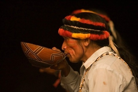 Speaking to Nature: Preserving Traditional Medicine in the Amazon | World Ayahuasca Conference Ibiza 2014 | Scoop.it
