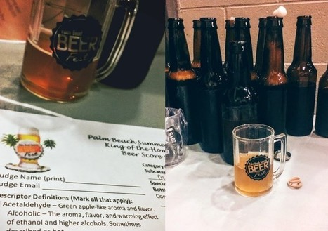 How to Judge a Homebrew Competition: Inside Tips on What the Judges Are Really Looking For | International Beer News | Scoop.it