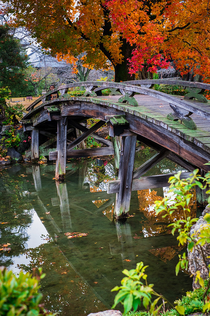Curved wooden bridge in Japanese garden in fall | Flickr - Photo ... | A Love of Japanese Gardens | Scoop.it