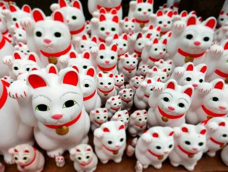 Tokyo temple's beckoning cats keep visitors purring in | The Japan Times | Expat Life In Japan: | Scoop.it