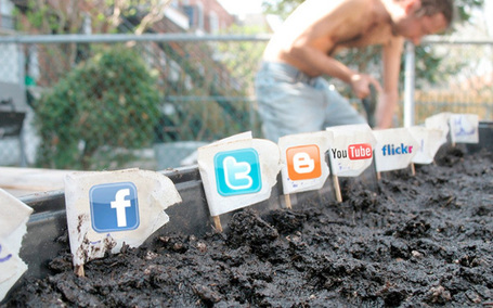 Tips for Updating Your Company's Social Media Policy | Social Networking for Information Professionals | Scoop.it
