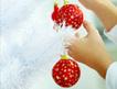 Decorating Diva: Creative ways to trim your tree | gardening ideas | Scoop.it