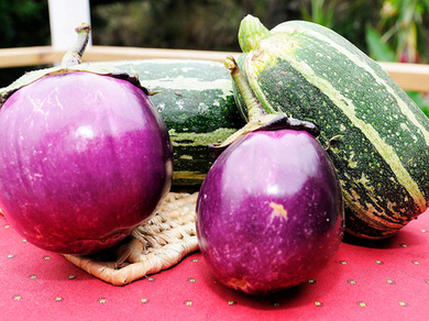 Jamaica strong investor in agricultural R&D - report - Jamaica Gleaner | Jamaica's Economy | Scoop.it