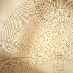 L'arbre généalogique, 4ème partie - Types et conventions | Yvon Généalogie | GenealoNet | Scoop.it
