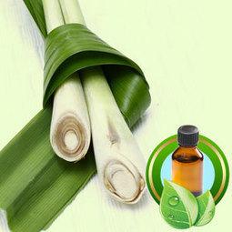 Lemongrass Guatamalan ESSENTIAL OIL | Essential-Oils | Scoop.it