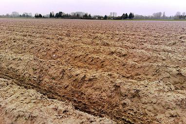 Pollué, labouré, oublié: le sol français est en train de disparaître   Le recours aux forêts   Scoop.it