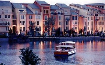 Loews Orlando resorts faces cat controversy   HotelOnlineMarketing   Scoop.it