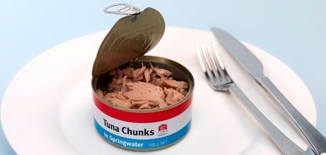 """4 Reasons Why More People are Turning Away from Tuna (""""time to take this off your grocery list"""") 
