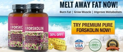 DO NOT BUY Premium Pure Forskolin UNTIL YOU READ THIS!!! | Premium Pure Forskolin review – How Does It Work It ? | Scoop.it