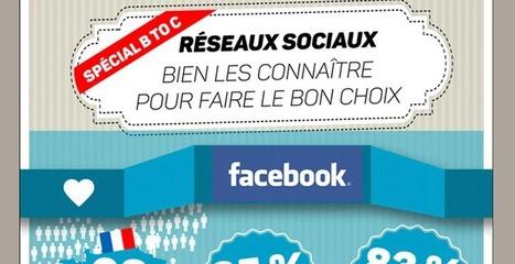 Infographie réseaux sociaux : ce que vous devez savoir | Réseaux sociaux et Curation | Scoop.it