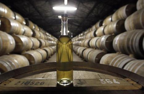 Le Cognac français s'exporte très bien malgré la crise | Le Vin en Grand - Vivez en Grand ! www.vinengrand.com | Scoop.it