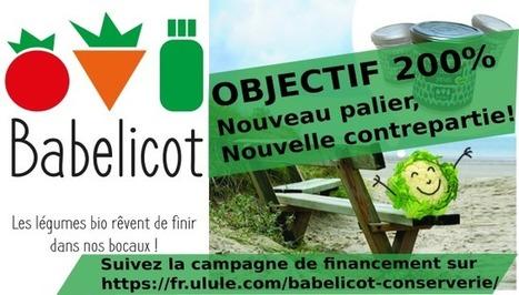 Babelicot – légumes bios, locaux, en bocaux | Pour une autre manière de consommer | Scoop.it