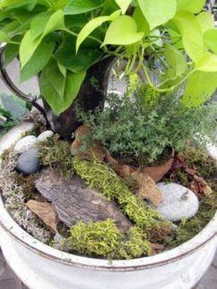 Wheel Well No Fuss Indoor Garden   Upcycled Garden Style   Scoop.it