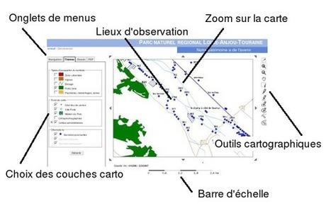 Sterne - Aide : Introduction   Dispositifs d'échanges de pratiques et d'informations   Scoop.it
