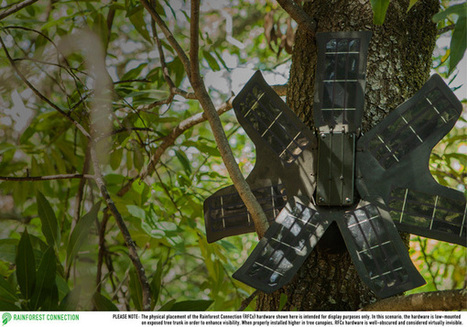 Old Cellphones Become Poaching Detector in Real Time | Wildlife Trafficking: Who Does it? Allows it? | Scoop.it