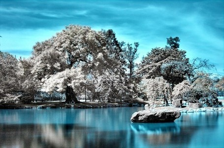 "What is Infrared Photography? | ""Cameras, Camcorders, Pictures, HDR, Gadgets, Films, Movies, Landscapes"" 