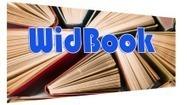 Créer des eBook en mode interactifs et collaboratifs « Univers Smartphone  | AMANSOU AbDeL | EI-CESI | Univers Smartphone | Scoop.it