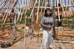 Zambia's Smallholder Farmers Flourish With Purchase For Progress ... | Improving farming power in DR Congo | Scoop.it