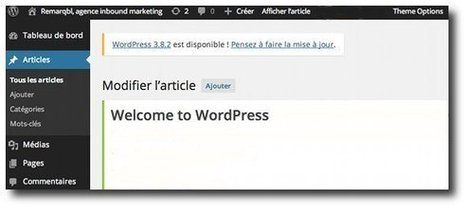 Wordpress : la potion magique pour votre site internet ? | Inbound Marketing Institut | Scoop.it