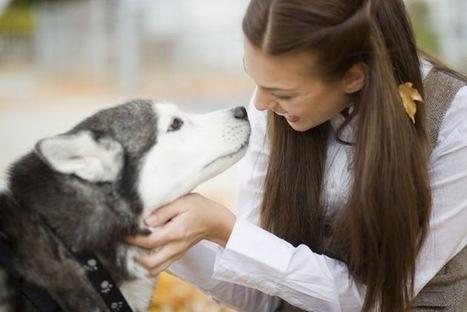 Cómo elegir el perro ideal - eju.tv | tu perro | Scoop.it