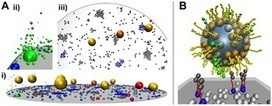 ReaDDy - A Software for Particle-Based Reaction-Diffusion Dynamics in Crowded Cellular Environments | Social Foraging | Scoop.it