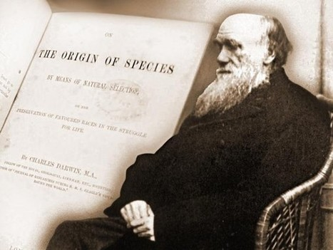 Can Darwinism Survive without Teleology? | The Atheism News Magazine | Scoop.it