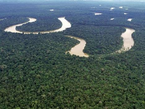 Torre 'gigante' vai monitorar Amazônia | Geoflorestas | Scoop.it